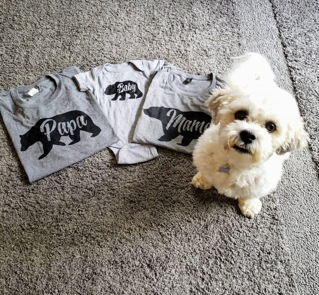 dog sitting next to t-shirts and a baby onesie