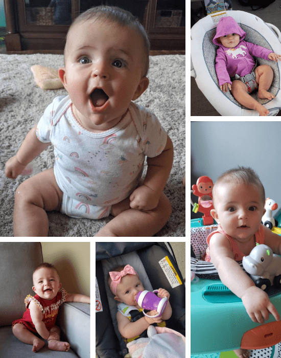five photos of a six month old baby